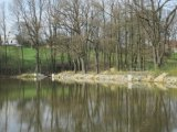 Rybník Ťulpa
