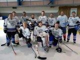 Hokejisti 2017